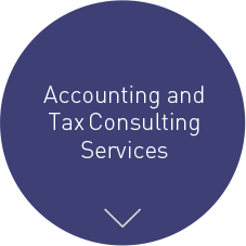 Accounting and Tax Consulting Services